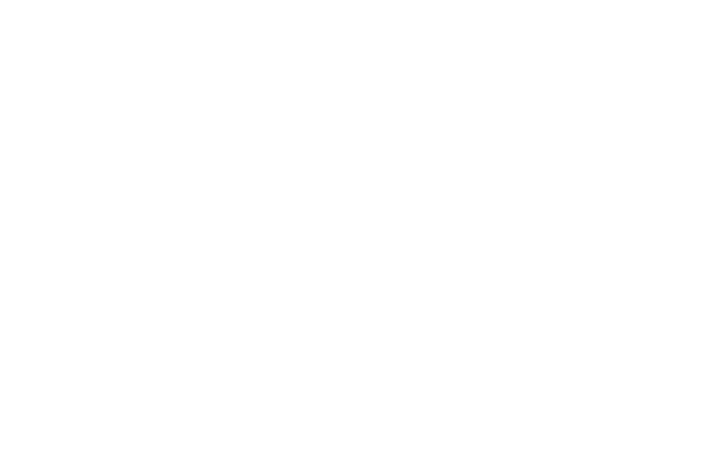 The Art Doors